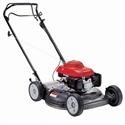 Lawn Maintenance and Improvement